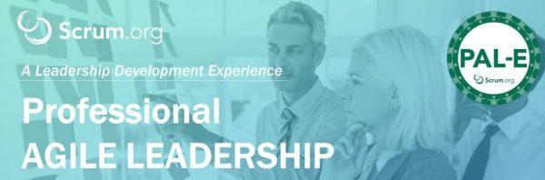 Itnove curso professional agile leadership