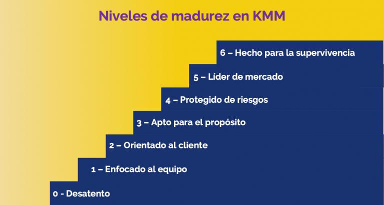 Niveles de madurez KMM